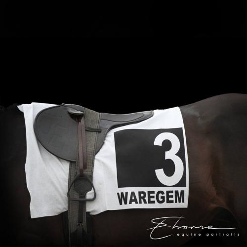Waregem Koerse 2018 behind the scenes
